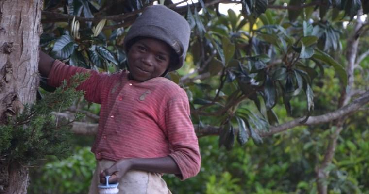 Eliane, de Madagascar