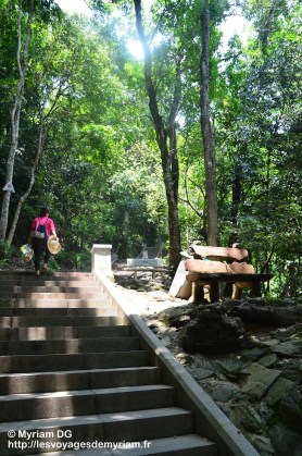 Les escaliers loooongs pour monter au sommet de la colline