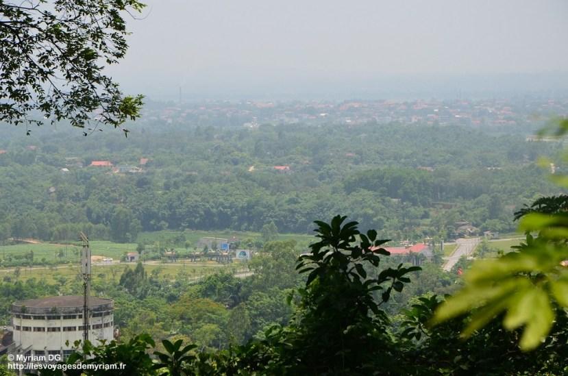La vue depuis la colline, entre les nombreux arbres!