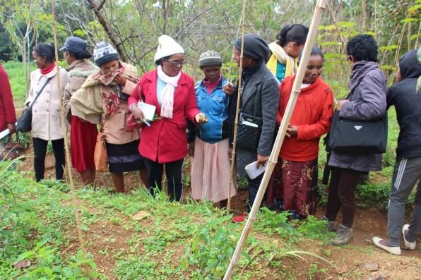 Sortie des femmes malgaches avec l'association malgache ODADI, financé par l'association française Femmes En Action