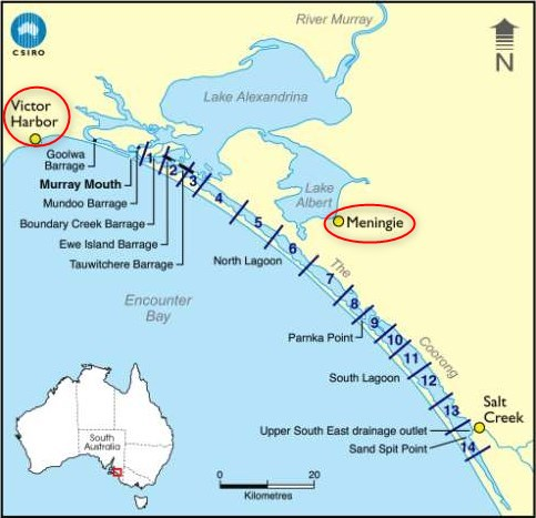 Victor Harbor et Meningie - Australie