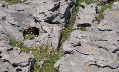 Le Burren - Comté de Clare (Irlande)