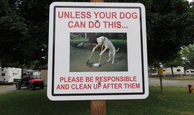 le chien (humour !)