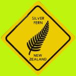 Fougère argentée - Nlle Zélande
