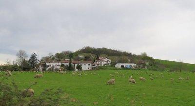 Entre St Jean Pied de Port et St Sébastien