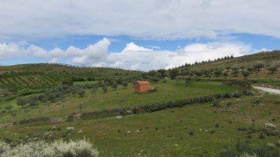 La région du Douro