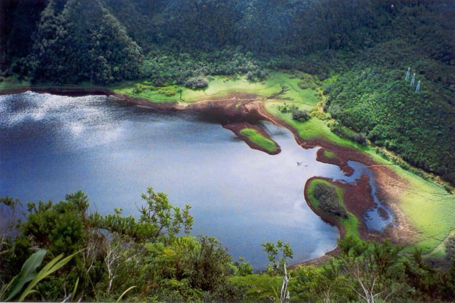 Le Grand Etang (Réunion)