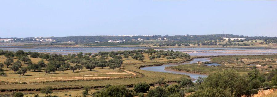 Vue sur le fleuve Guadiana et les marais salants depuis la forteresse de Castro Marim