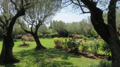Les jardins de Sirmione