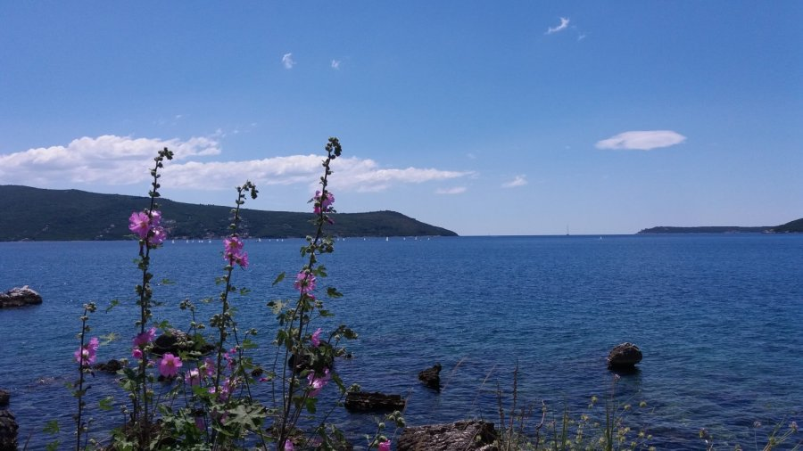 Bord de mer à Herceg Novi - Monténégro