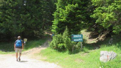 Randonnée vers le Lac Noir - Parc du Durmitor (Monténégro)