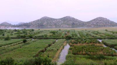 La plaine verdoyante près de Klek - Croatie