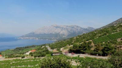 Paysage sur la presqu'île de Peljesac - Croatie
