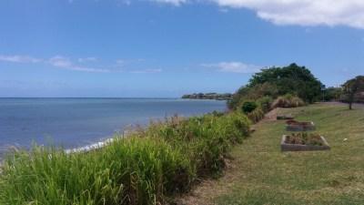 Le parc de Bois Madame - Ste Marie (Réunion)
