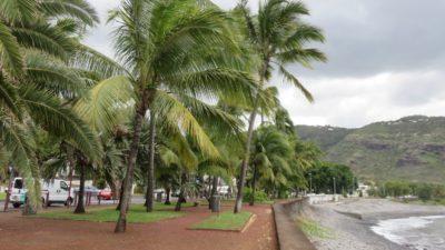Balade au Barachois (petit port) de St Denis (Réunion)