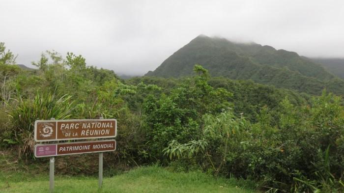 La cascade du chien (Réunion)