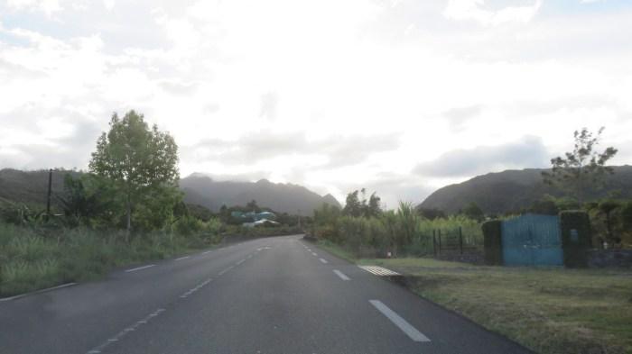 Sur la route de la Plaine des Palmistes (Réunion)