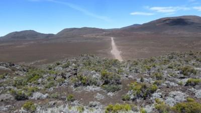 La route d'accès au Piton de la Fournaise