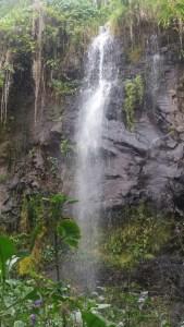 L'Anse des cascades - Réunion