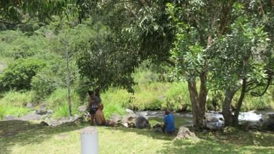 Sur la route de la Rivière Langevin - Réunion