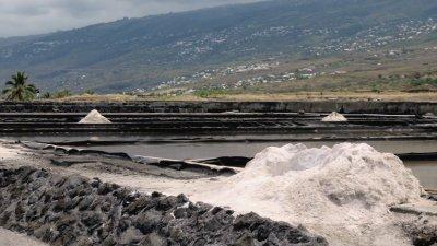 Les marais salants de la Pointe au sel - Etang Salé les Bains (Réunion)