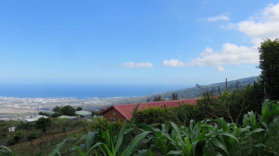 Vue sur St Paul et la côte depuis Bois de Nèfles - Réunion
