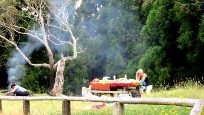 Pique nique au bord de la route forestière du Tévelave - Réunion