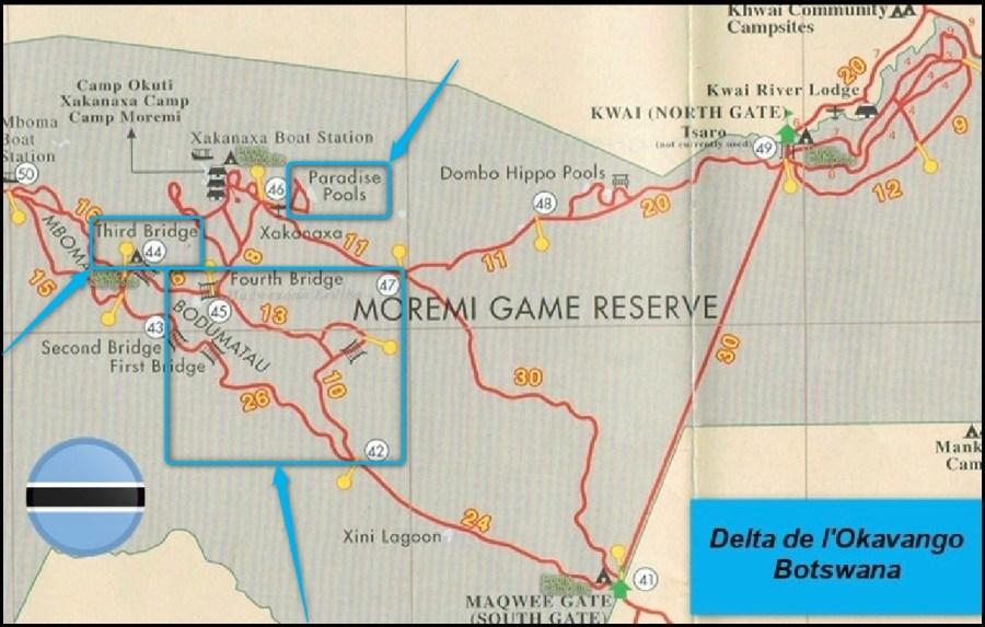 Moremi Game Réserve - Botswana