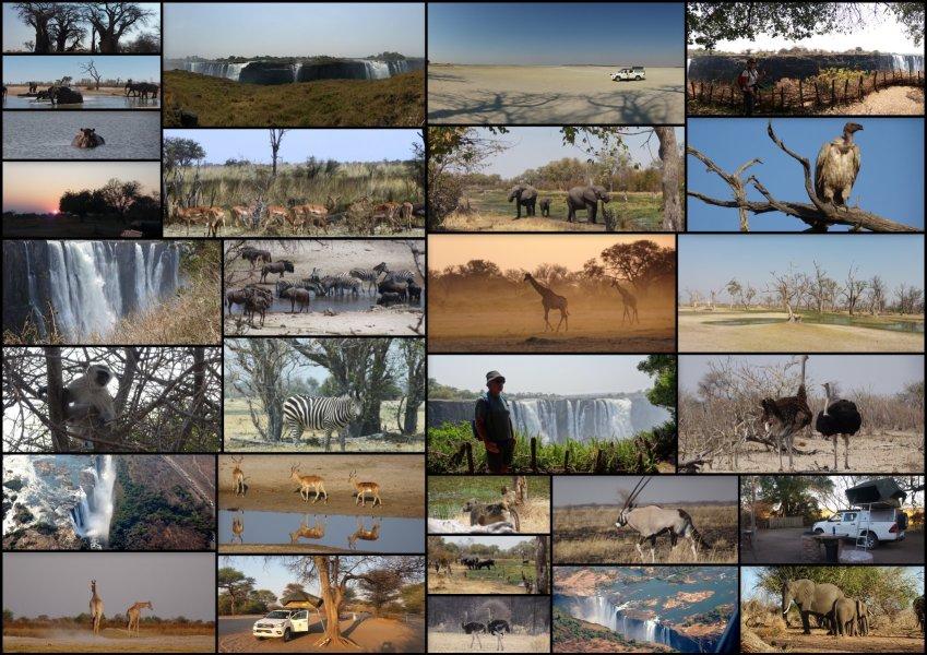 Safari au Botswana et Chutes Victoria au Zimbabwe (Sept 2019)