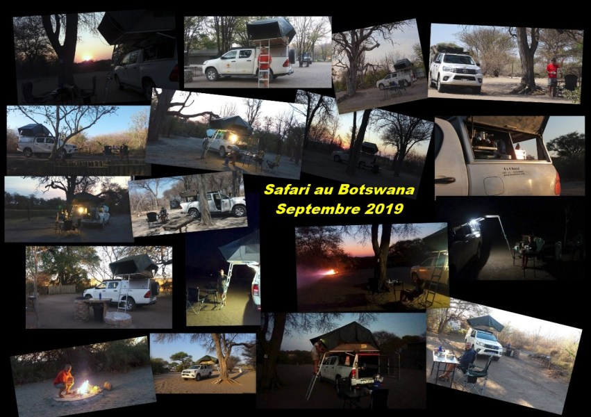 Safari au Botswana (Sept 2019)