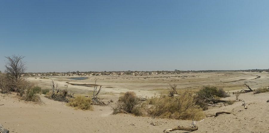 la Rivière Boteti - Makgadikgadi NP (Botswana)