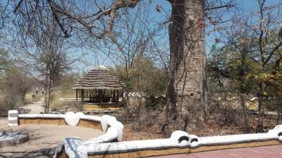 Le campsite Planet Baobab - Botswana