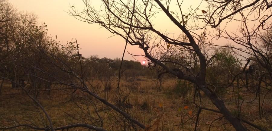 Coucher de soleil sur le campsite de Third Bridge - Botswana