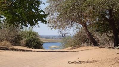 Au bord de la rivière du parc national de Chobe - Botswana