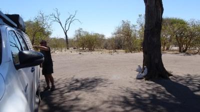 Au campsite de Savuti - Botswana