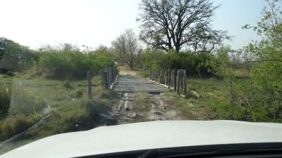 Third Bridge - Réserve de Moremi (Botswana)