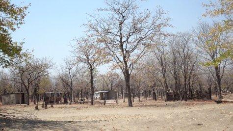 Village avant Shorobe en direction de Maun - Botswana