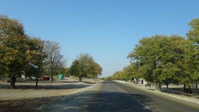sur la route entre Maun et Makgadikgadi NP - Botswana