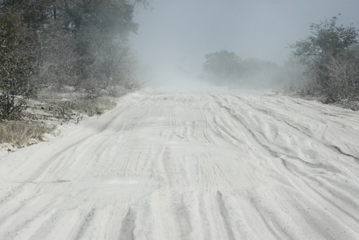la White Road entre Savuti et la concession de Khwai - Botswana