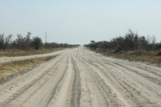 Sur la piste vers le Nxai Pan NP - Botswana