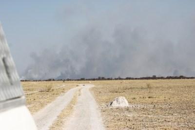Un feu de brousse sur la piste du Nxai Pan NP (Botswana)