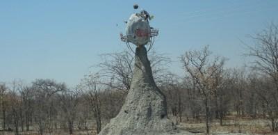 Planet Baobab - Botswana