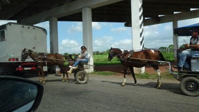 Charrettes sur l'autoroute La Havane - Vinales (Cuba)