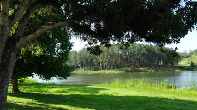 L'étang de Las Terrazas - Cuba