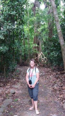 Dans la forêt tropicale du parc National Carara - Costa Rica