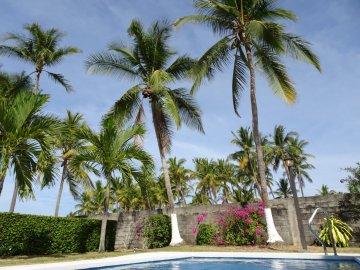 Sous les cocotiers au bord de la piscine - El Roble (Costa Rica)