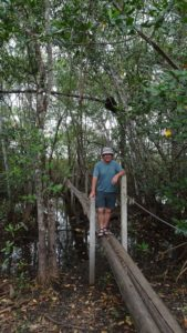 Pont de bois de Tarcoles - Costa Rica