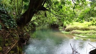 Le Rio Celeste dans le parc du volcan Tenorio - Costa Rica