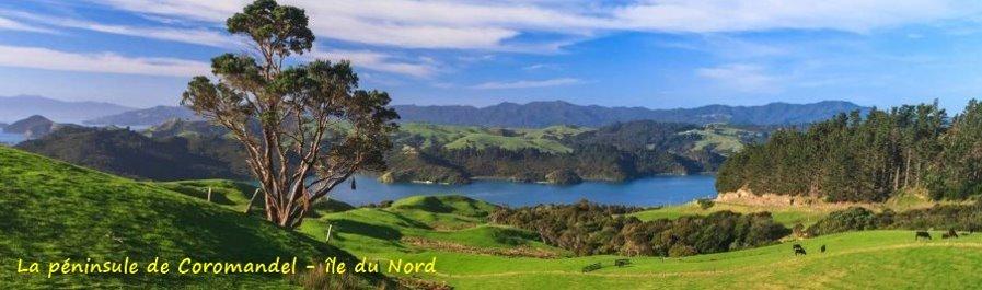 La péninsule de Coromandel - île du Nord (Nlle Zélande)
