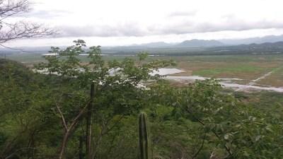 beau belvédère avec le serpentement de la rivière Tempisque - Parc de Palo Verde (Costa Rica).